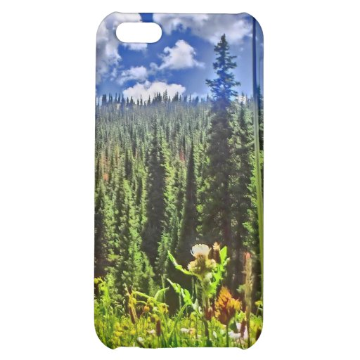 Colorado forrest scenery iphone 4 case