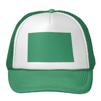 Colorado Green State Snap Back Mesh Trucker Hat