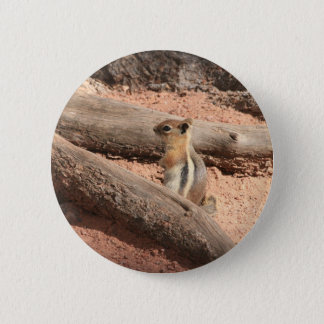 Colorado Ground Squirrel Button