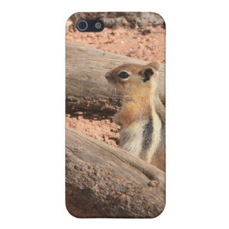 Colorado Ground Squirrel Cover For iPhone SE/5/5s