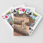 Colorado Ground Squirrel Playing Cards