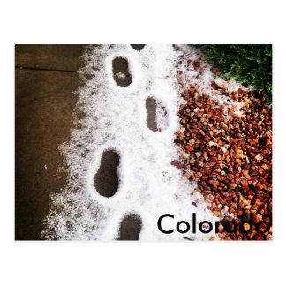 Colorado Hail Steps Postcard