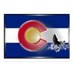 Colorado Kayak Post Cards