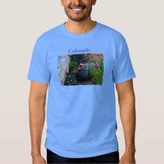 Colorado-landscape T Shirt