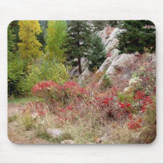 Colorado Landscape Works Mouse Pad