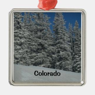 Colorado Metal Ornament