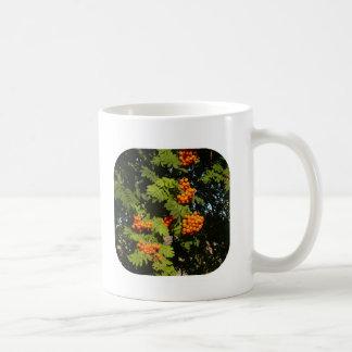 Colorado Mountain Ash Cup Mug