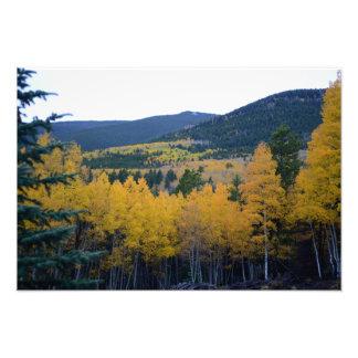 Colorado Mountain Views Photo