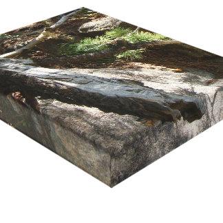 Colorado Mountain Vignette Gallery Wrapped Canvas