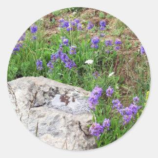 Colorado Mountain Wildflowers Classic Round Sticker