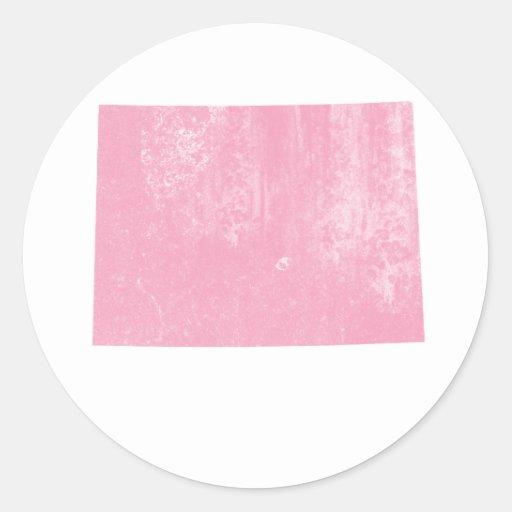 Colorado Pink Vintage Grunge Round Stickers