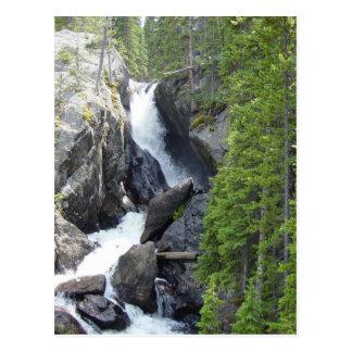 Colorado Rawah Falls Postcard