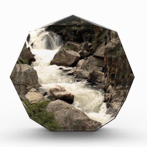 Colorado River Award