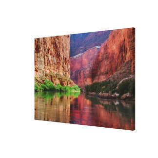 Colorado river in Grand Canyon, AZ Canvas Print