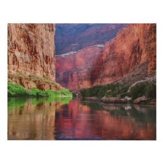 Colorado river in Grand Canyon, AZ Panel Wall Art