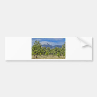 Colorado Rockies Bumper Sticker