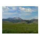 Colorado Rockies Postcard