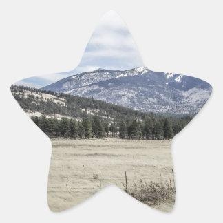 Colorado Rockies Star Sticker