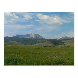 Colorado Rockies Tarjeta Postal