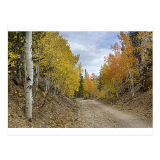 Colorado_Rocky_Mountain_Colorful_Autumn_Back_Road. Postales