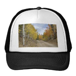 Colorado_Rocky_Mountain_Colorful_Autumn_Back_Road. Trucker Hat