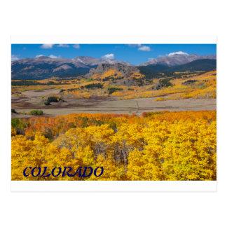Colorado Scenic Foliage Postcard