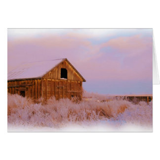 COLORADO SHED NOTE CARDS
