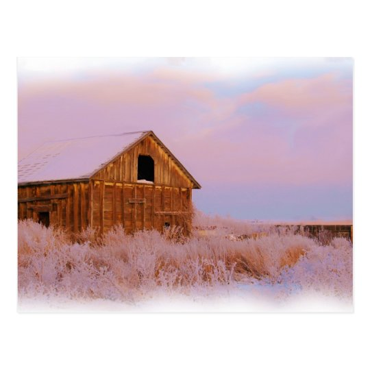 COLORADO SHED POSTCARD
