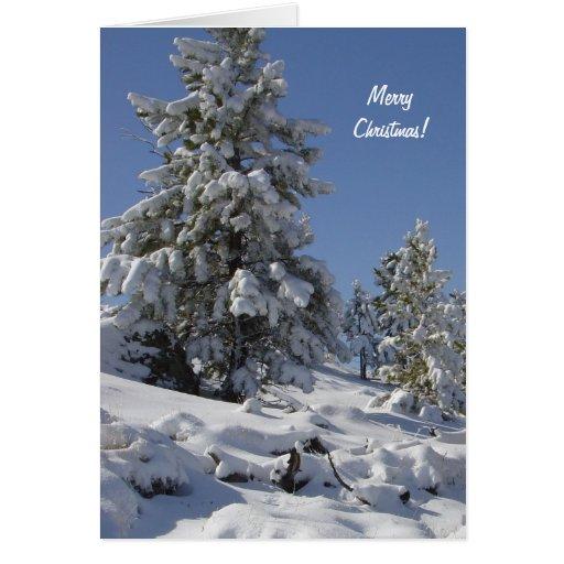 Colorado Snow Christmas Card