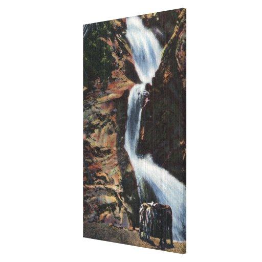 Colorado Springs, CO - baje tres de la caída siete Impresión En Lienzo Estirada