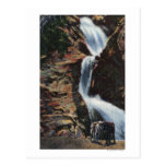 Colorado Springs, CO - baje tres de la caída siete Postales