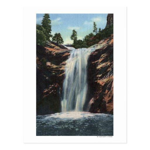 Colorado Springs, CO - caídas nupciales del velo Postales