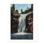 Colorado Springs, CO - caídas nupciales del velo Tarjetas Postales