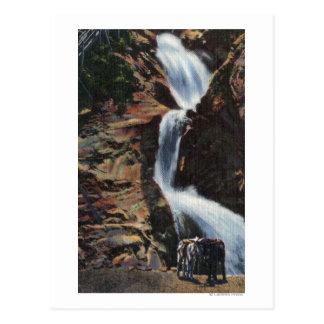 Colorado Springs, CO - Lower Three of Seven Fall Postcard