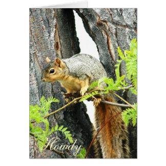 Colorado Squirrel Greeting Card