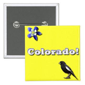 Colorado State Pinback Button