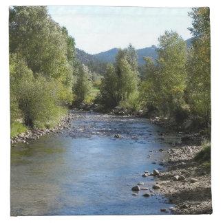 Colorado Stream photo - Estes Park Napkin