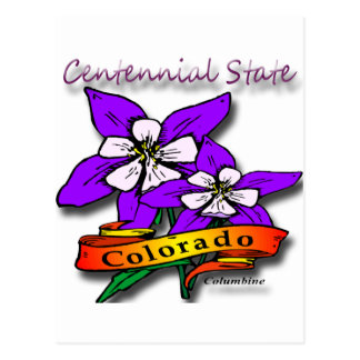 Colorado The Centennial State Flower Postcard