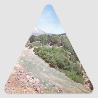 Colorado Train Scene Triangle Sticker