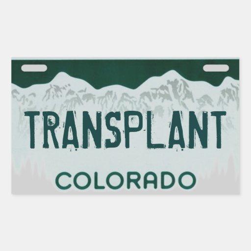 Dmv License Renewal Colorado Springs