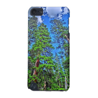 Colorado trees scenic ipod case