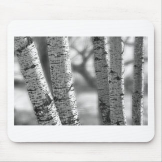 Colorado White Birch Trees in Black and White Mouse Pad