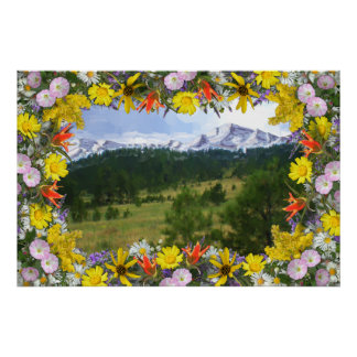 Colorado Wildflowers Snow-Capped Mountains Poster