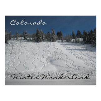 Colorado winter wonderland postcard