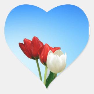 Colorea la fuente de felicidad pegatina en forma de corazón