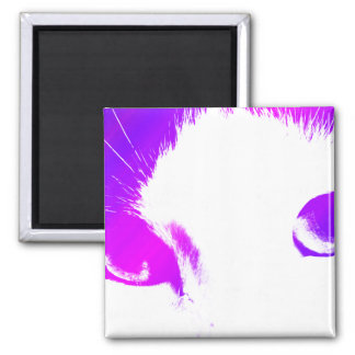 Colored Cat Eyes Magnet
