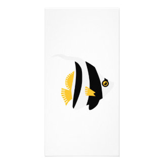 Colored Fish Photo Card
