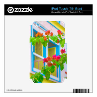 Colored Flowers in Front ot Windows House Decals For iPod Touch 4G