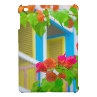 Colored Flowers in Front ot Windows House iPad Mini Cases