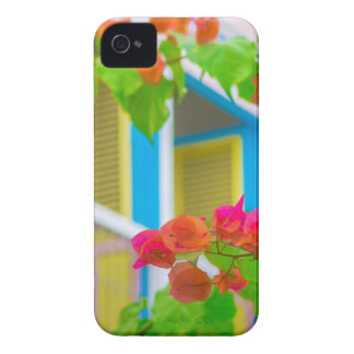 Colored Flowers in Front ot Windows House iPhone 4 Cover
